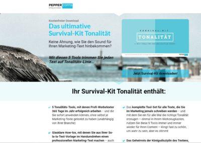 Texte Leadpage Tonalitätsentwicklung